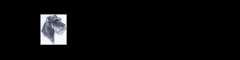 TestBanner